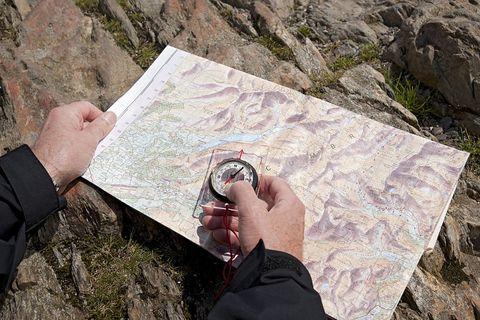 Geology, Rock, Hand, Tree, Drawing, Illustration, Art,