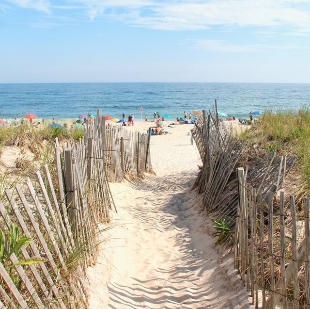 Vegetation, Coastal and oceanic landforms, Coast, Sand, Ocean, Shore, Horizon, Azure, Sea, Beach,