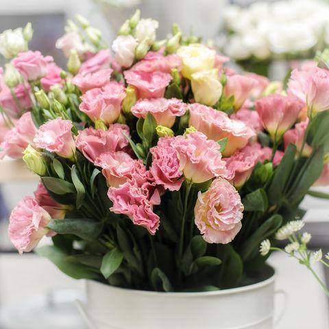 Flower, Flowering plant, Bouquet, Plant, Pink, Cut flowers, Floristry, Flower Arranging, Garden roses, Rose,