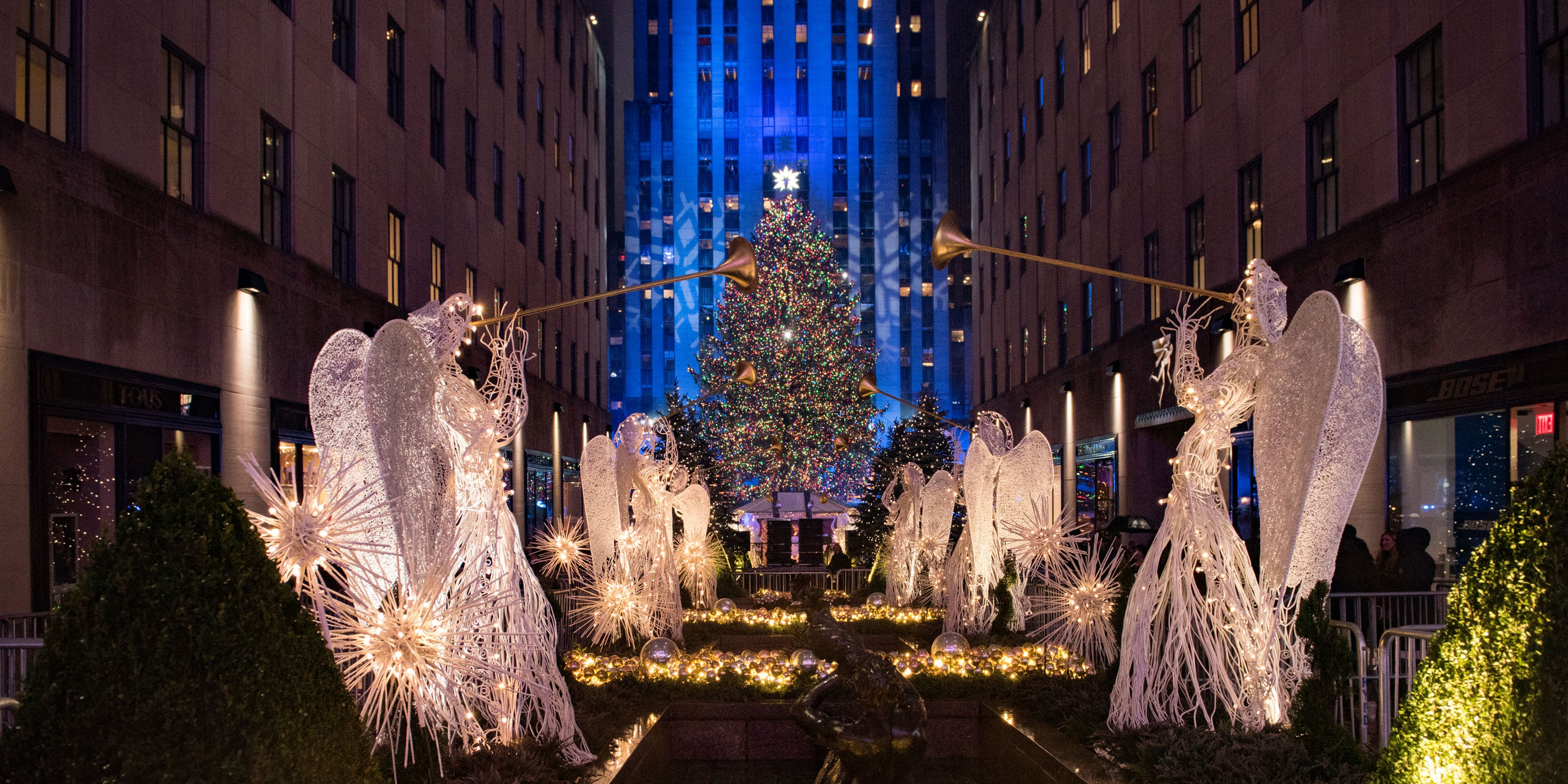 Rockefeller Center Has Picked This Year's Christmas Tree