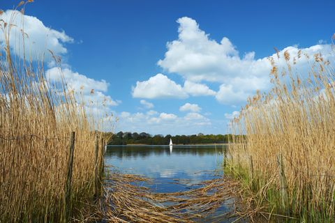 Sailing On Frensham Great Pond In The Surrey Hills