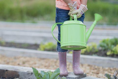 Green, Grass, Joint, Hand, Child, Garden, Dress, Plant, Yard, Action figure,