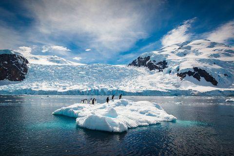 Polar ice cap, Iceberg, Ice, Glacial lake, Nature, Glacier, Sea ice, Glacial landform, Sky, Arctic ocean,