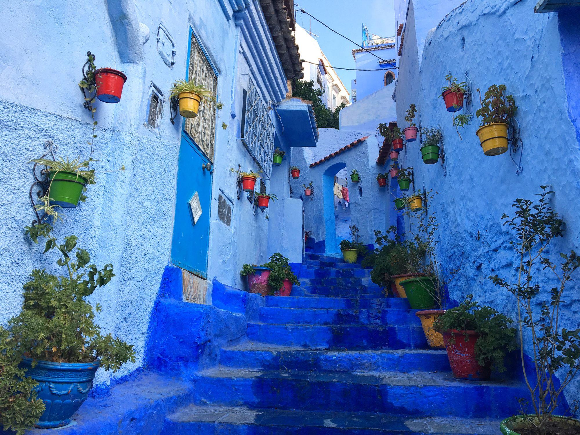 Image result for 50 nuances de bleu