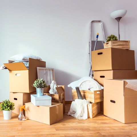 Product, Room, Furniture, Floor, House, Interior design, Shelf, Wood, Cardboard, Home,