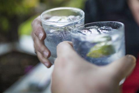 aldi gin festival