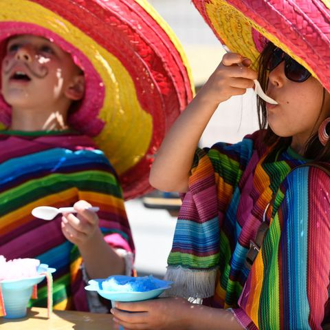 What is Cinco de Mayo - day of the dead