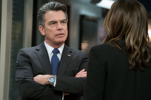 Who Plays Nick on Grace and Frankie? What to Know About Peter Gallagher