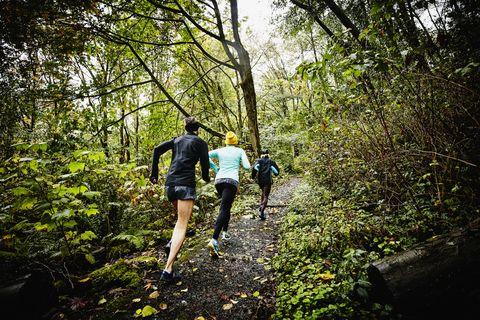 produkty wysokiej jakości dobrze znany renomowana strona Trail Running Training | How to Train for a Trail Marathon