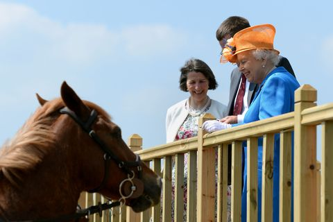 Royal visit to Duchy of Lancaster farms - Staffordshire