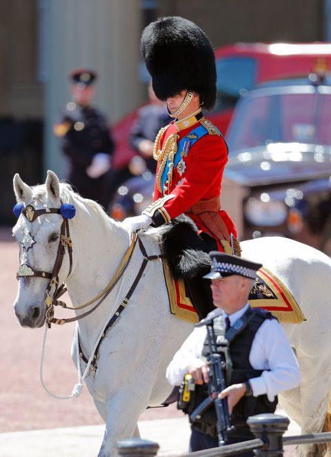 Horse, Bridle, Rein, Halter, Horse tack, Horse harness, Recreation, Mare, Uniform, Headgear,