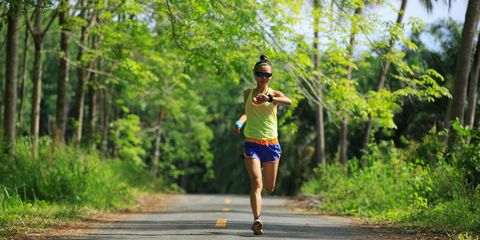 Running, Long-distance running, Outdoor recreation, Recreation, Jogging, Individual sports, Tree, Sports, Athlete, Ultramarathon,