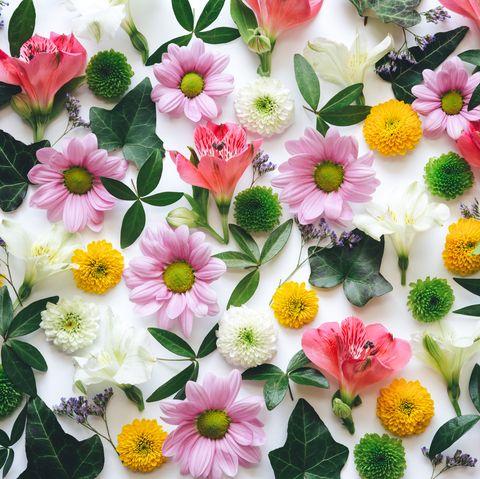 Flower, Petal, Plant, Artificial flower, Pink, Flowering plant, Floral design, Floristry, Spring, Flower Arranging,