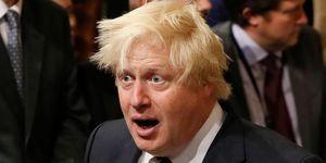 Boris johnson voting record