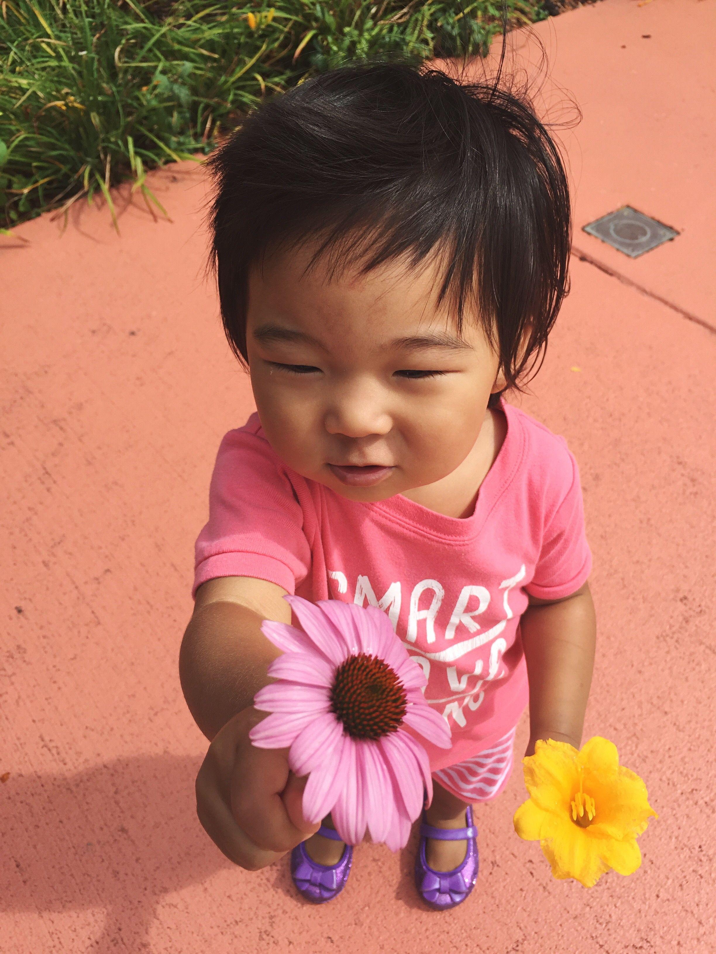 baby girl flower names