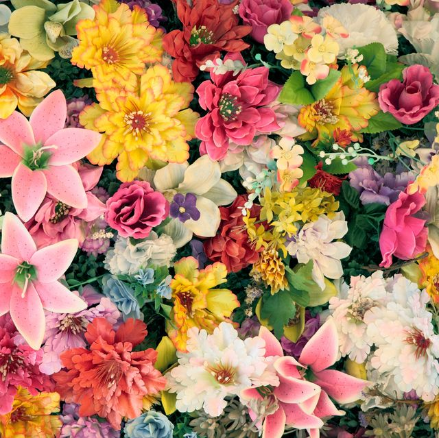 background with lots of colorful flowers