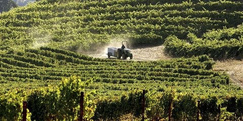 California Wine Is Testing Positive for Radioactive Material from the Fukushima Nuclear Disaster