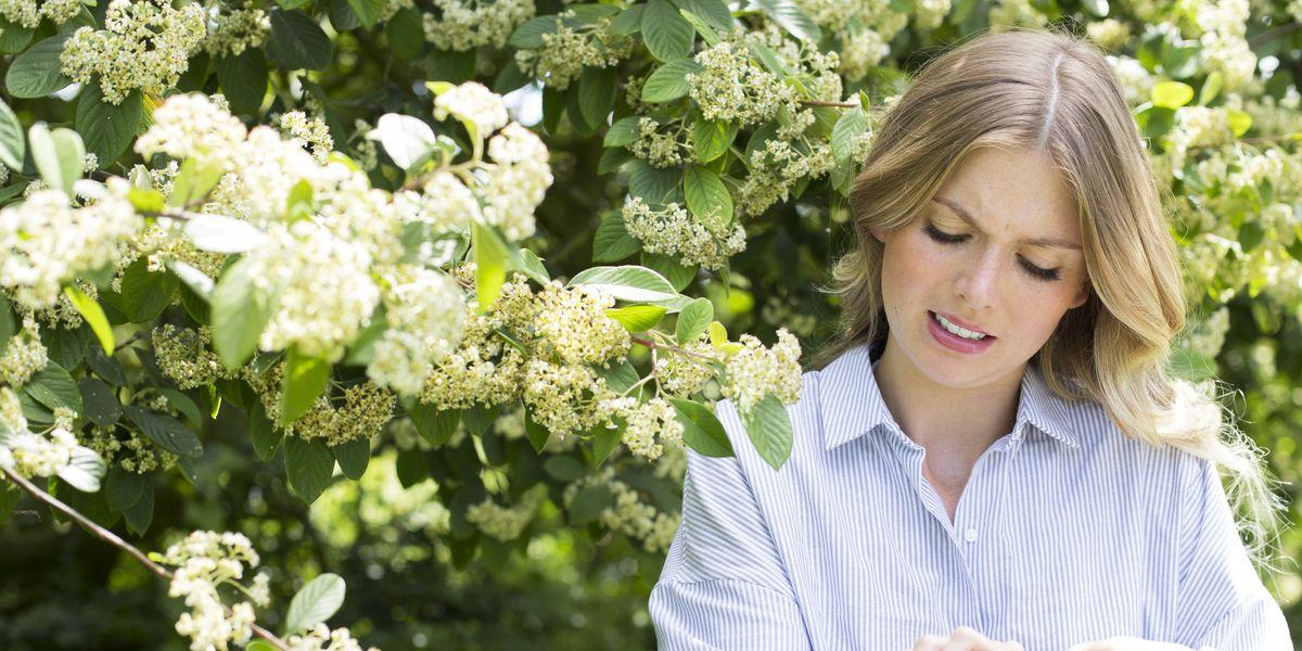 Fexofenadine (Telfast, Allegra): antihistamine for hay fever and urticaria