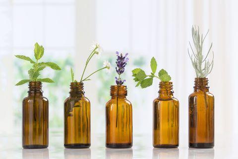 Bottle, Glass bottle, Product, Wine bottle, Plant, Glass, Flower, Still life, Home accessories, Plastic bottle,