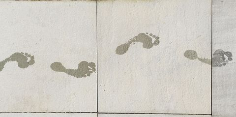 High Angle View Of Footprint On Footpath