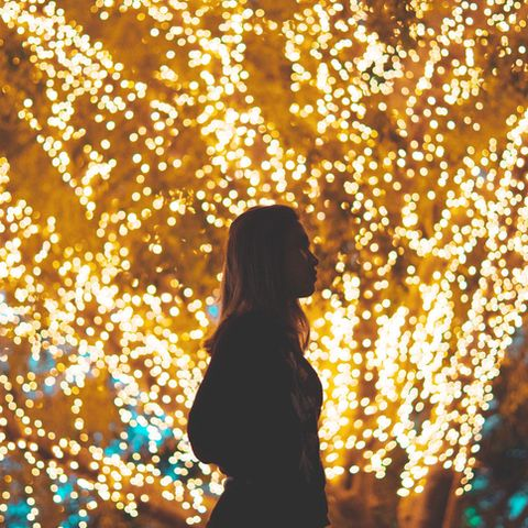 people in nature, light, yellow, tree, lighting, christmas lights, spring, confetti, branch, adaptation,