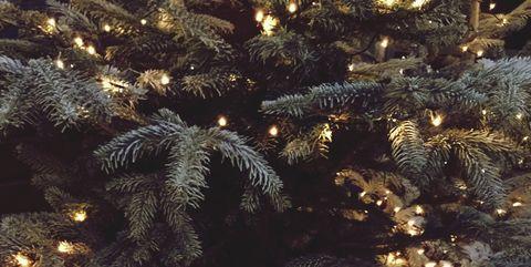 youve probably been hanging your christmas tree lights wrong - How To Put Christmas Lights On Tree