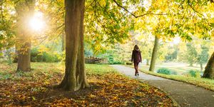 Woman Walking In Park During Autumn
