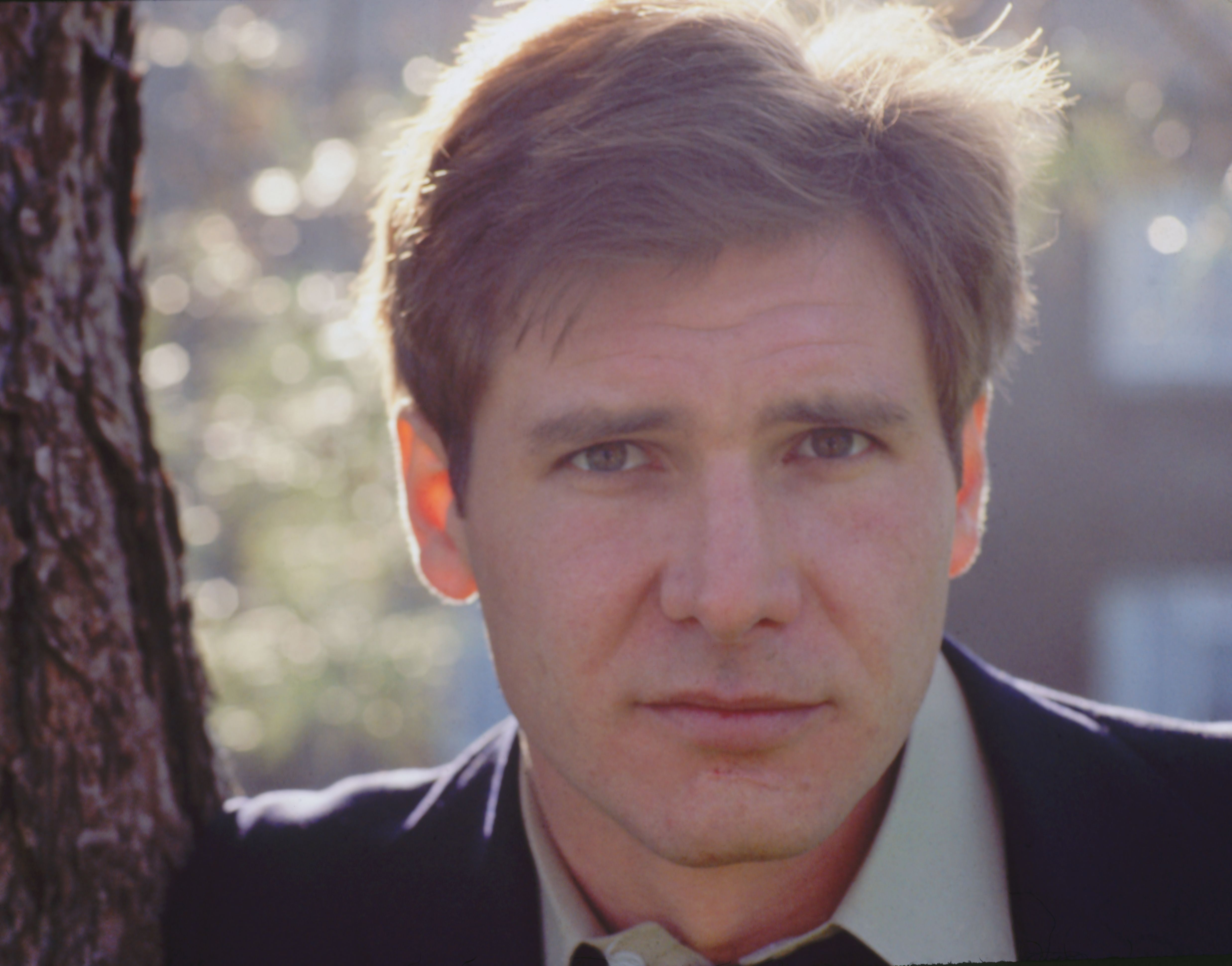 Harrison Ford at 34 Here's Ford in the '70s, starring in the TV movie Dynasty.