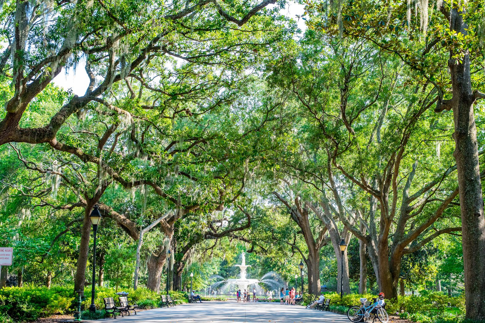 A Travel Guide To Savannah, Georgia