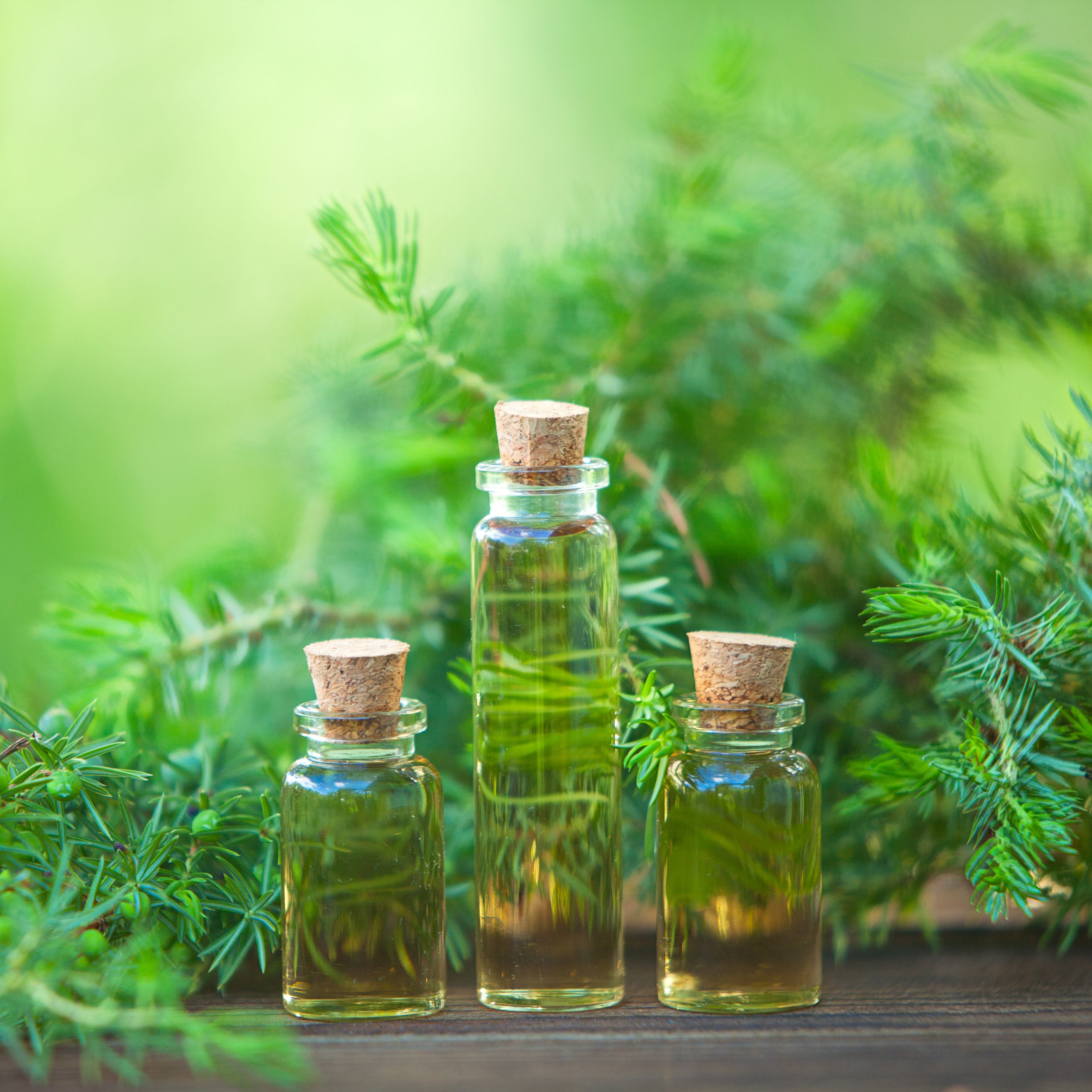 The 5 Biggest Benefits of Using Tea Tree Oil