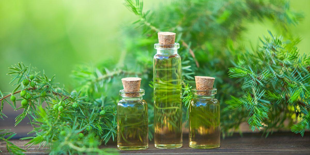hur använder man tea tree olja