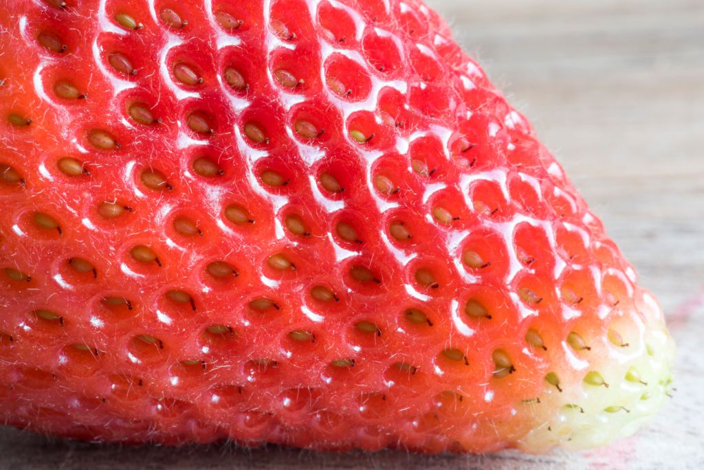 Dr. Pimple Popper Plucks Blackheads Like 'Seeds Out of a Strawberry' in New Video
