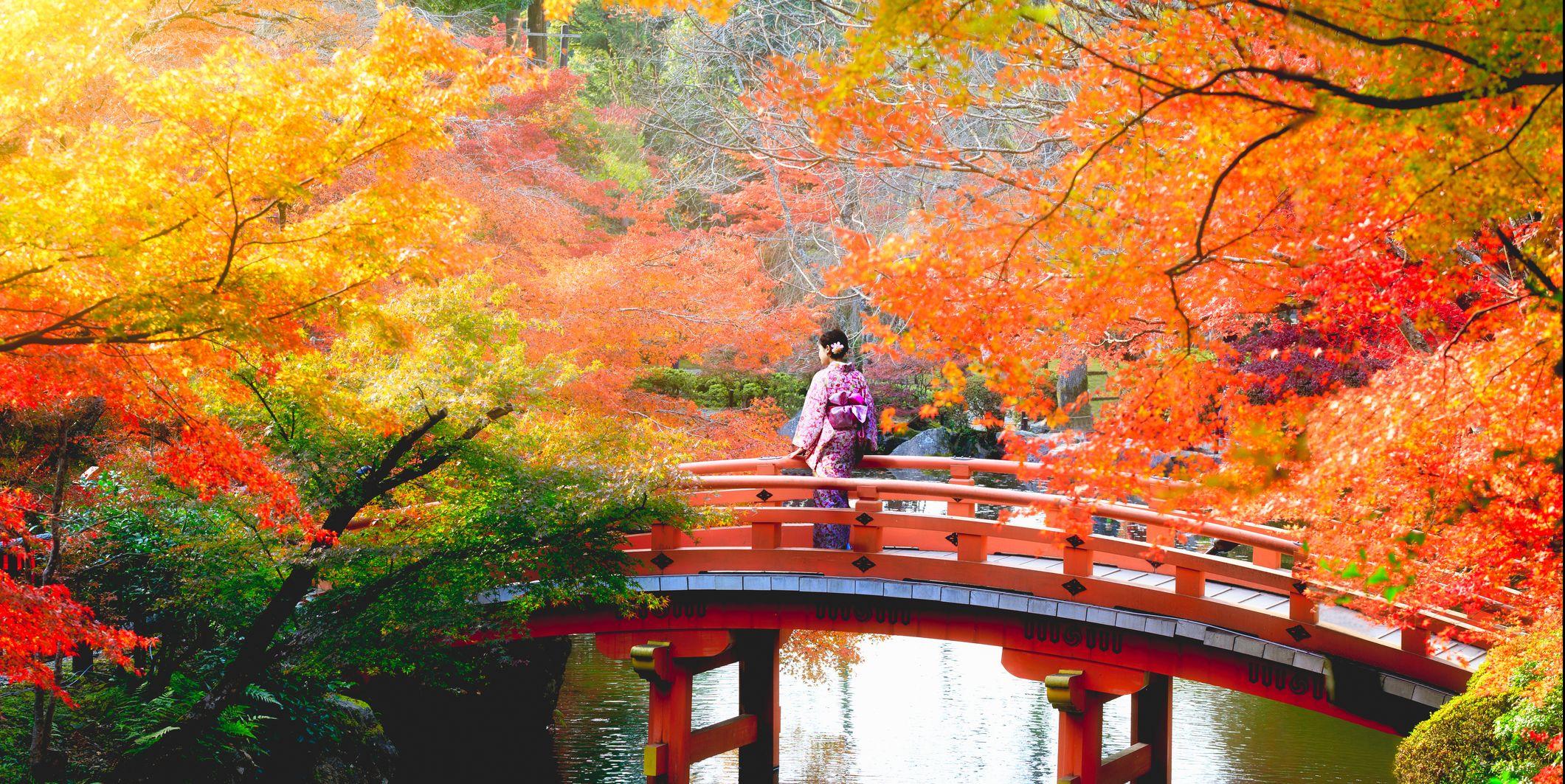 除了清水寺、伏見稻荷,日本京都「在地人私推景點12選」才能真正感受京都的道地之美