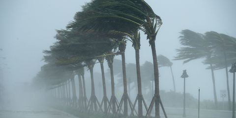 This is how hurricanes and storms get their names