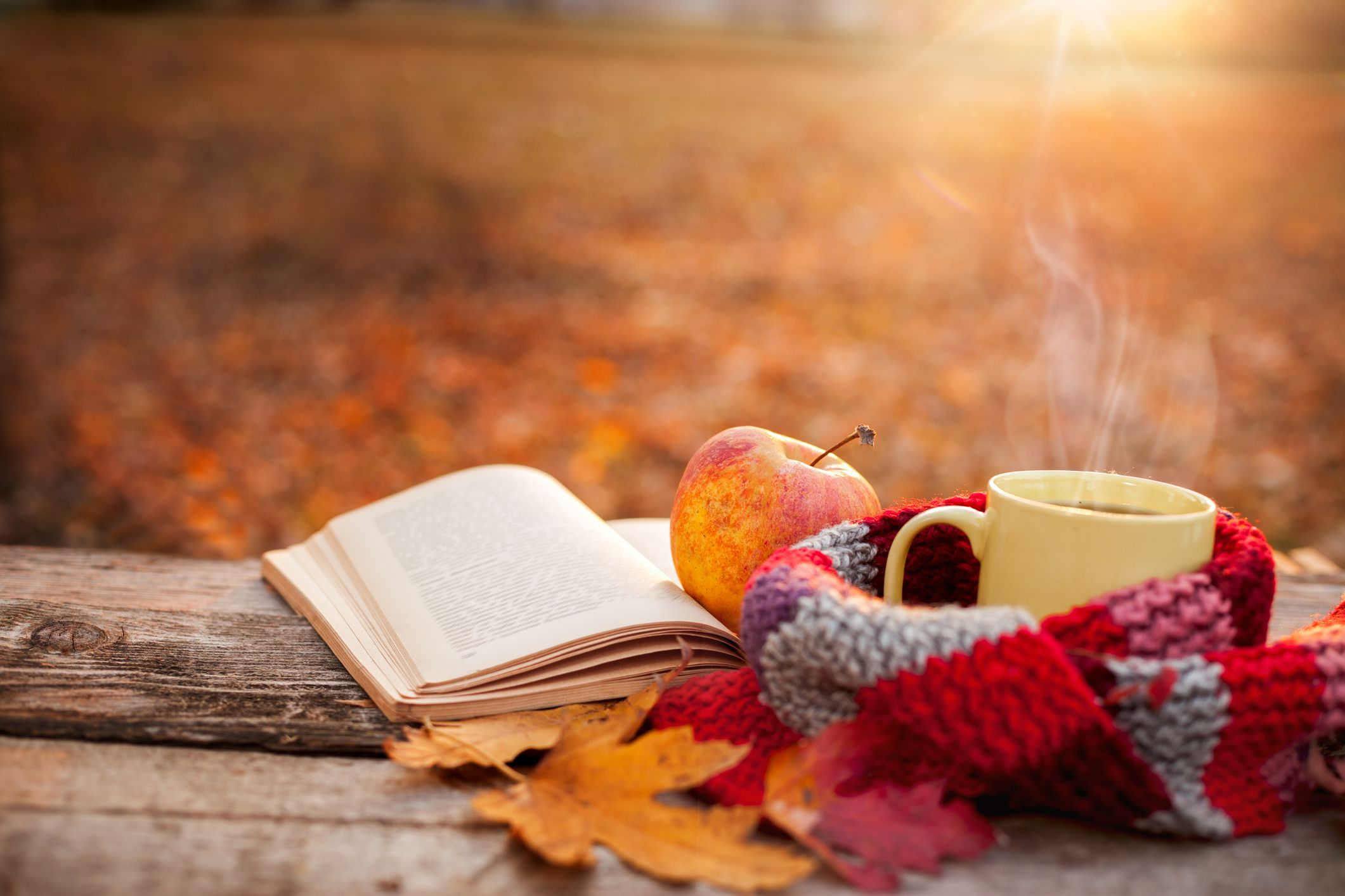 55 Best Fall Quotes 2020 - Inspirational Autumn Quotes for Instagram