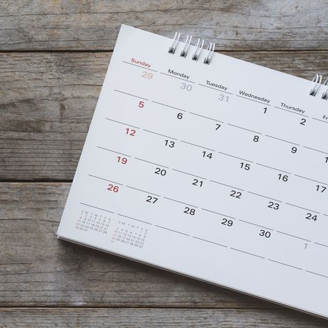 calendar palindrome week