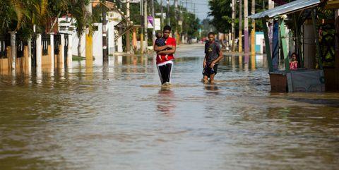 Water, Flood, Rain, Street, Waterway, Neighbourhood, Pedestrian, Fun, Event, Tree,