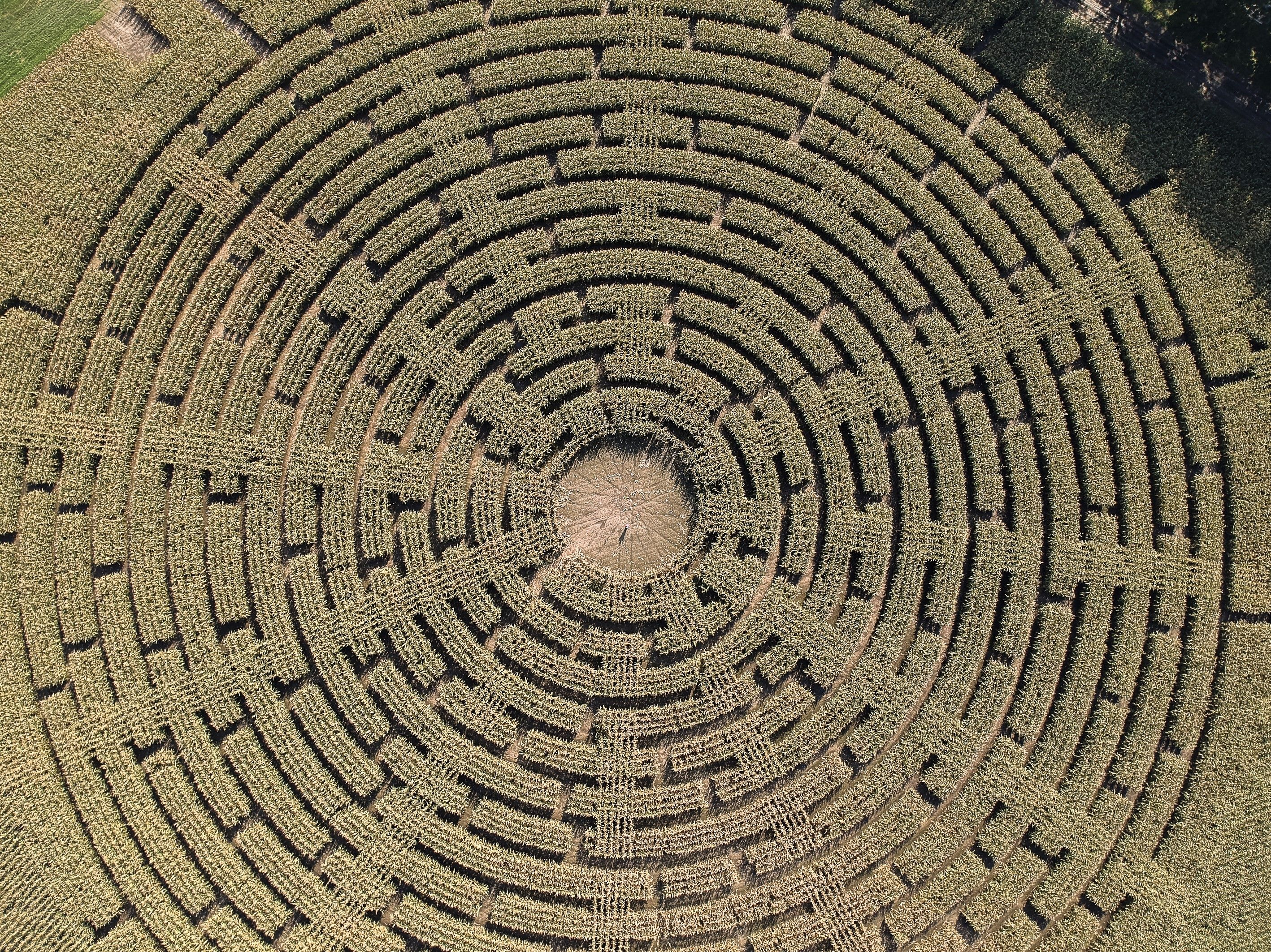 How To Draw A Perfect Circle 2009 Online 30 stunning crop circles and corn mazes photographed from above