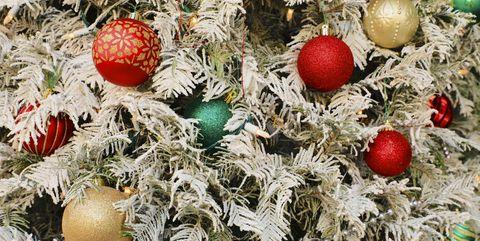 Christmas ornament, Christmas tree, Christmas, Christmas decoration, Plant, Tree, Holiday ornament, Christmas eve, Interior design, Fruit,