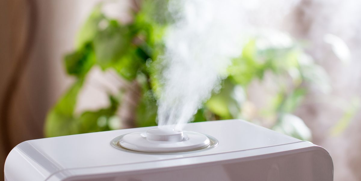 11 ways to improve indoor air quality at home that actually work