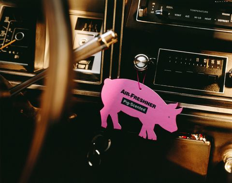 Steering wheel, Steering part, Vehicle door, Machine, Suidae, Livestock, Domestic pig, Cassette deck,