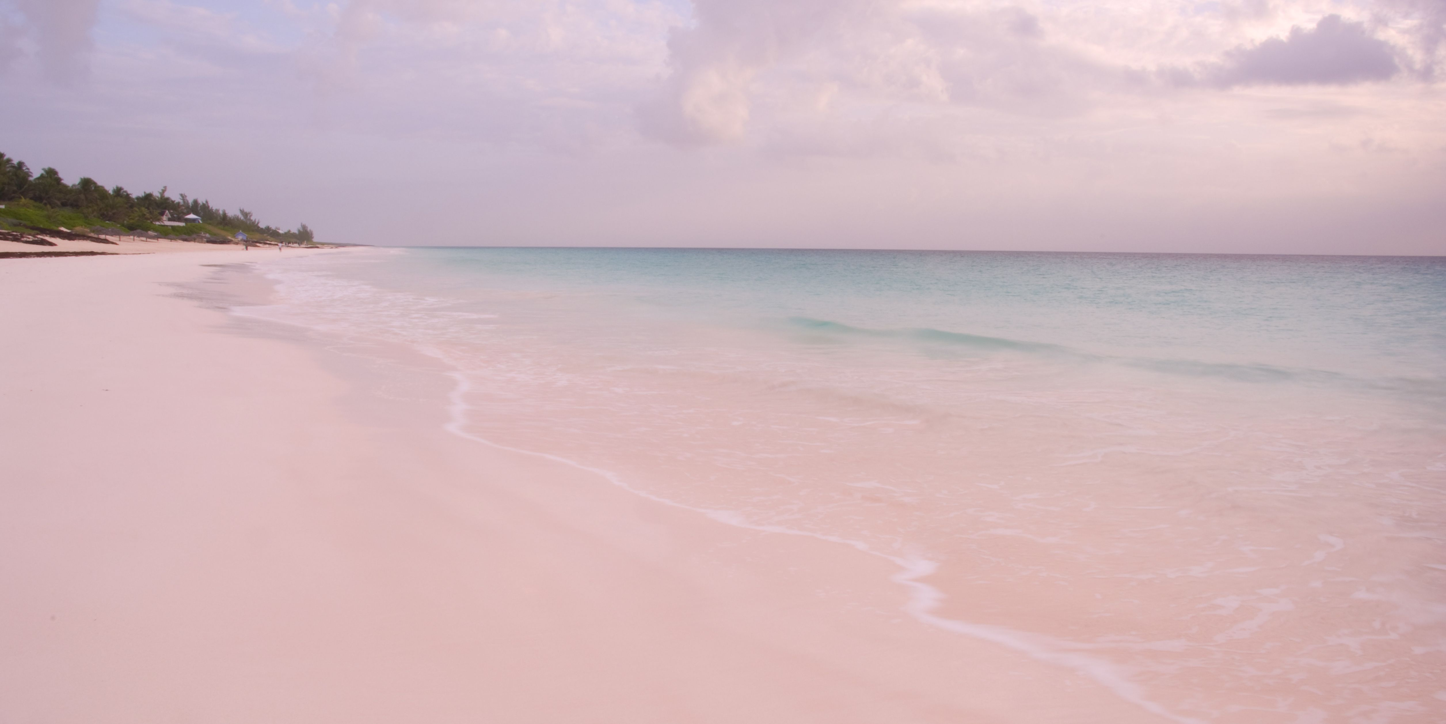 This Pink Sand Beach In The Bahamas Will Top Your Travel Bucket List