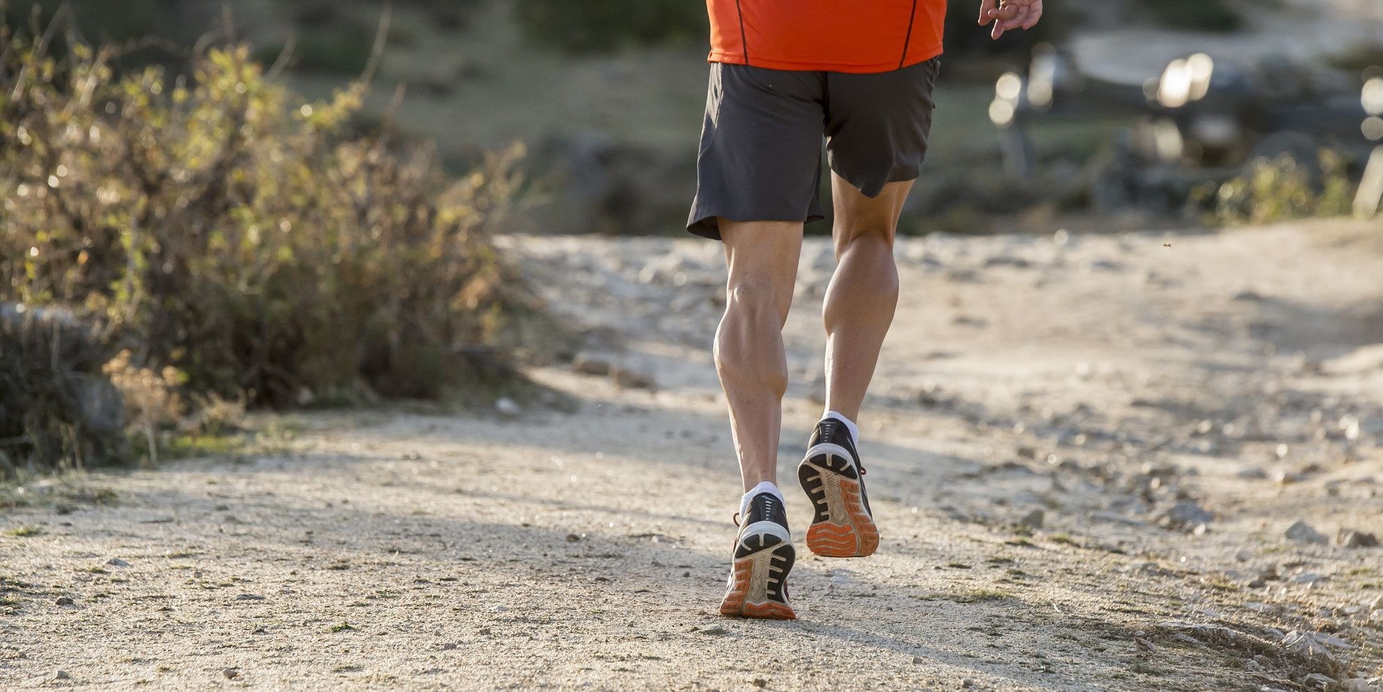 Soleus Muscle Calf Pain From Running