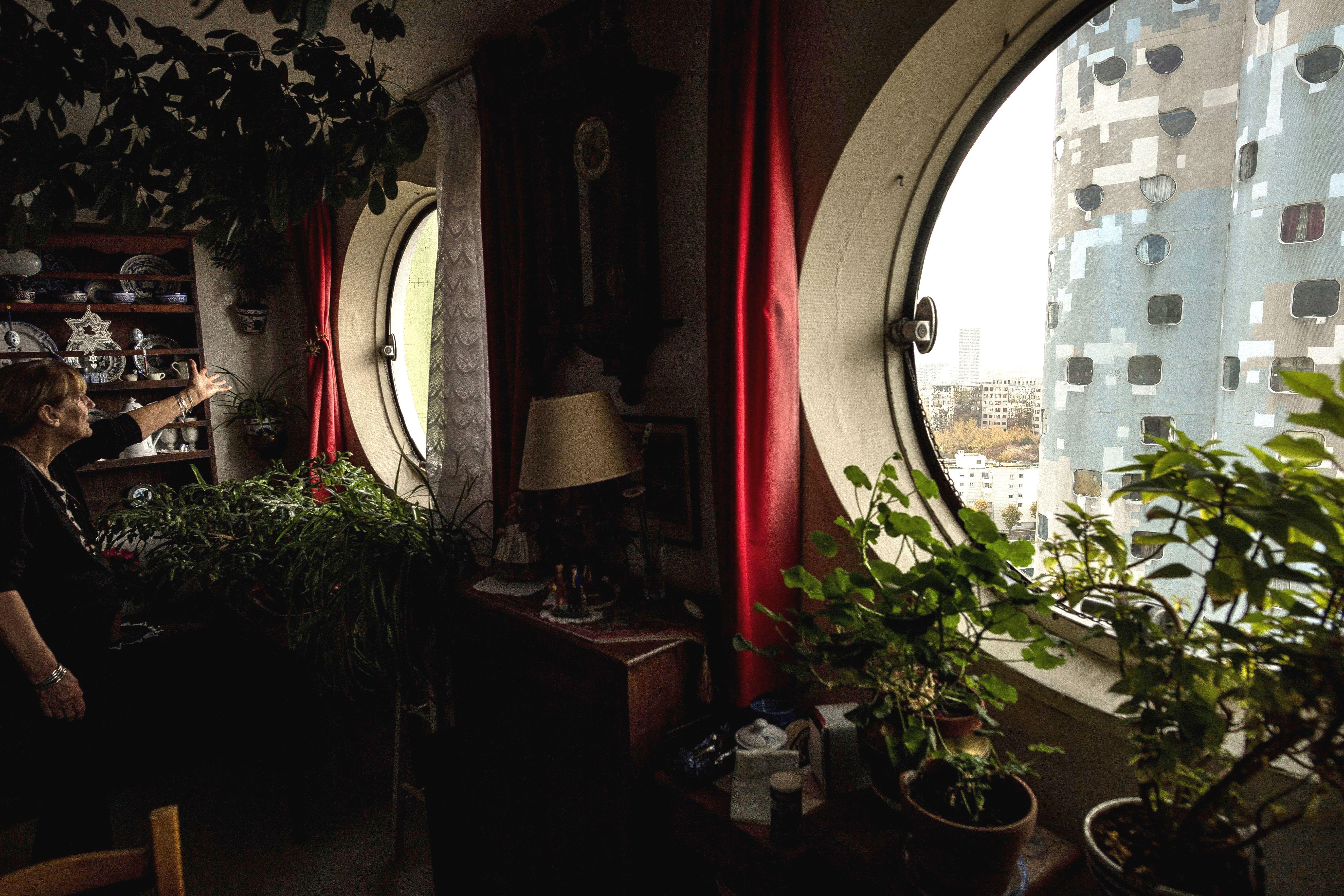 Piante Da Arredo Appartamento piante appartamento tendenze 2019