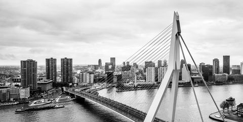Skyline Rotterdam with Erasmus Bridge