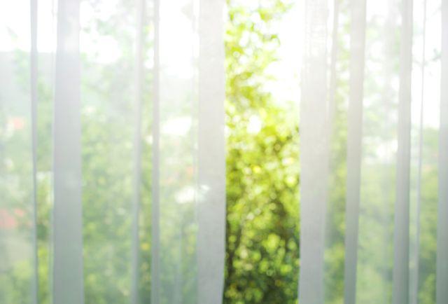 blur of white curtain with window view  tree garden background