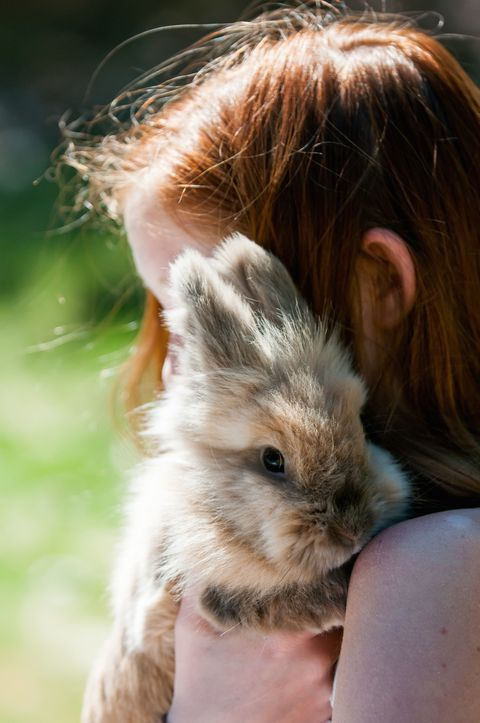young girl holding and hugging her pet rabbit