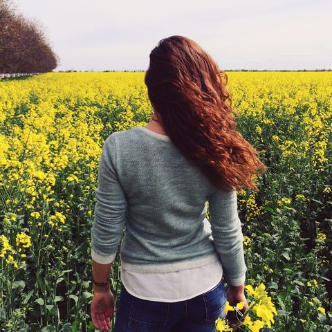 People in nature, Rapeseed, Yellow, Mustard plant, Plant, Canola, Flower, Crop, Mustard, Spring,