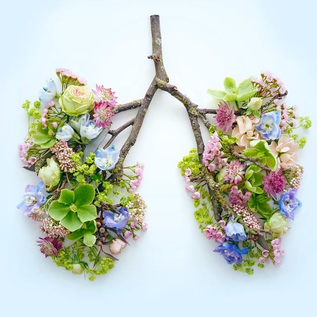 flowers, leaves, and tree branch in the shape of lungs