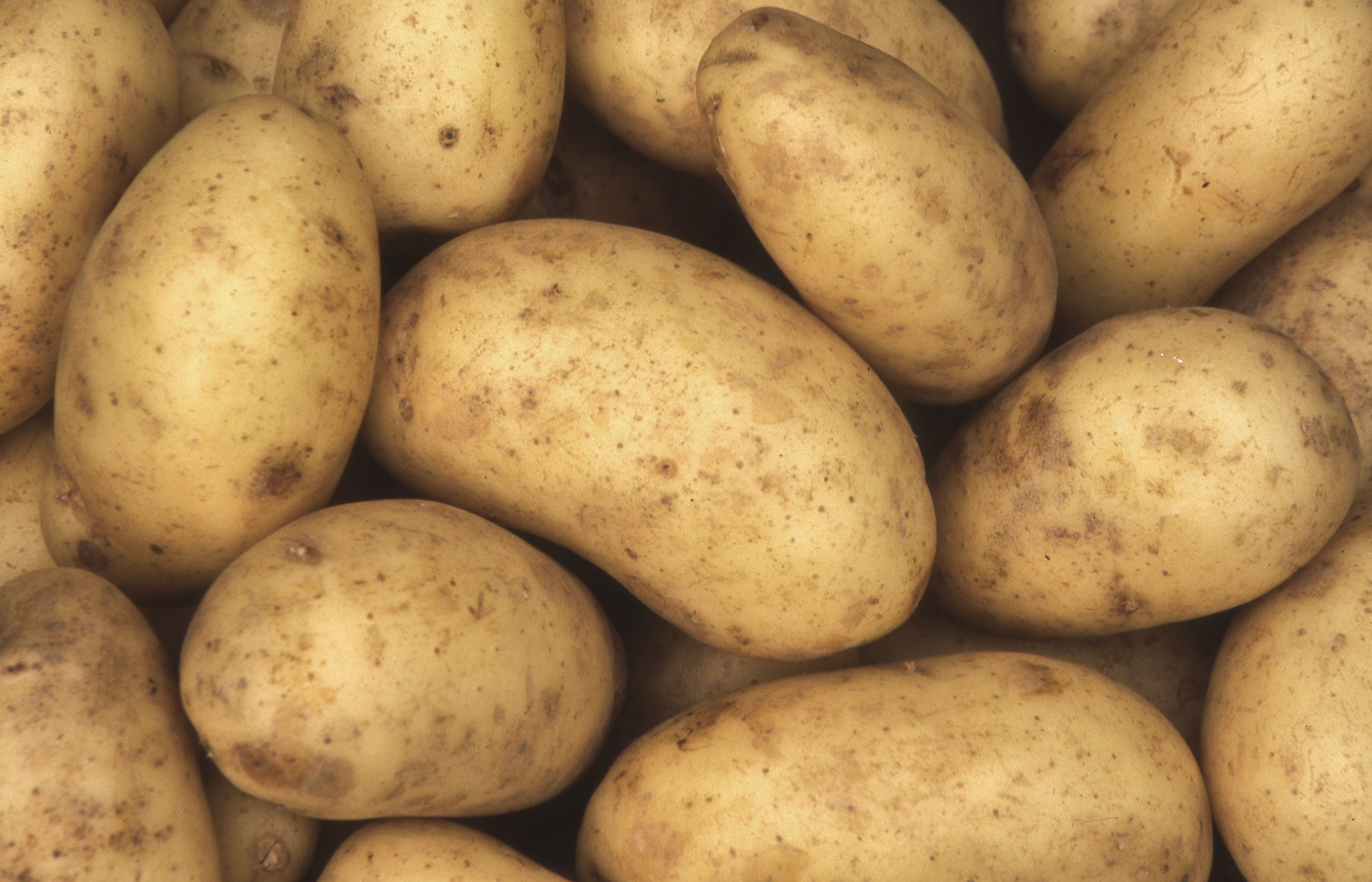 Are Potatoes Good For You? | Are Sweet Potatoes Healthy?